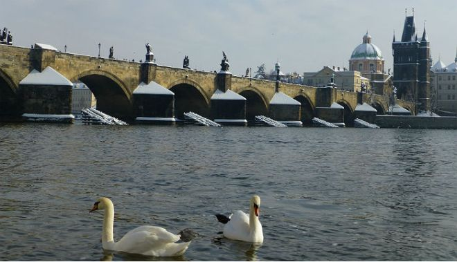 View from Kampa over to Charles Bridge