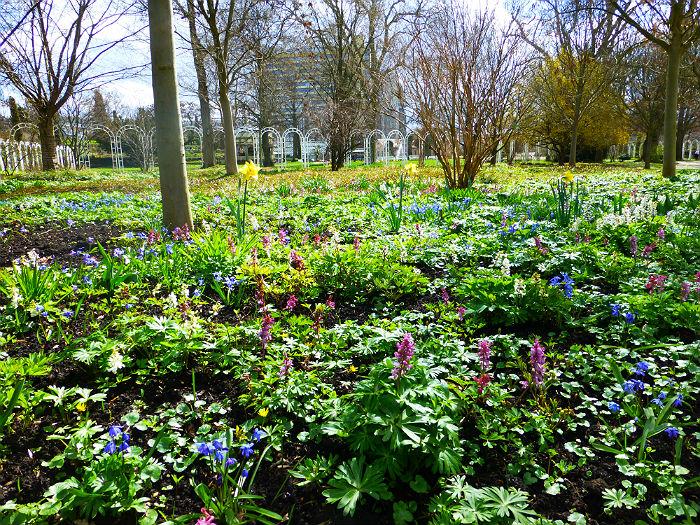 Spring in Ludwigsburg