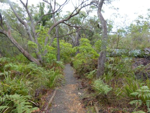 botanic_gardens_booderee1