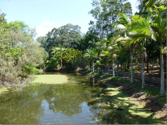hervey_bay_botanical_gardens.jpg