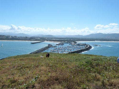 muttonbird-island1
