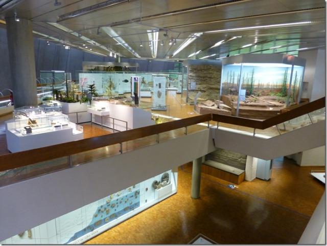 museum_am_loewentor2.jpg