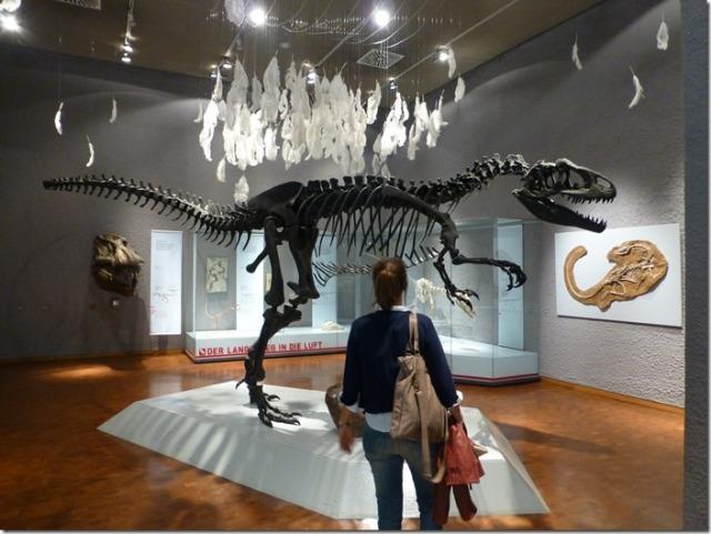 museum_am_loewentor7.jpg