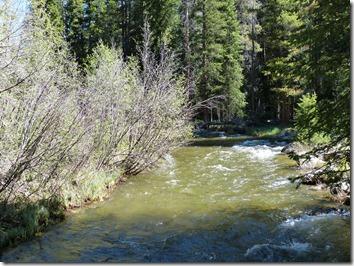 rocky_mountain_colorado_river2.jpg