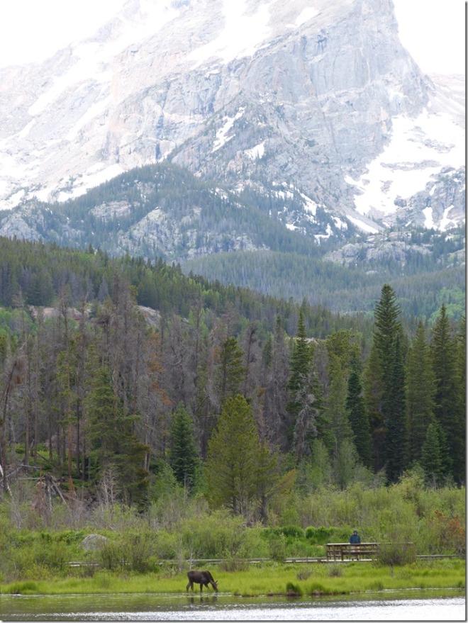 rocky_mountain_sprague_lake1.jpg