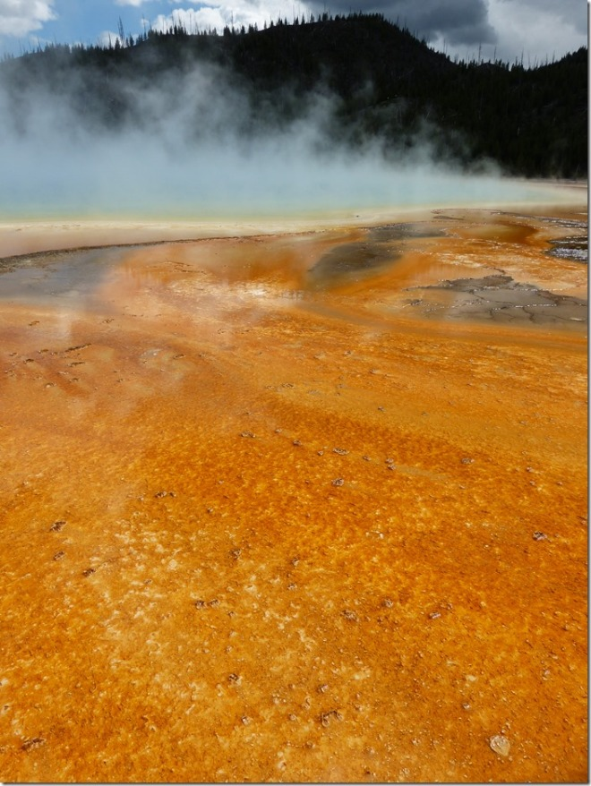 yellowstone_grand_prismatic_spring3.jpg