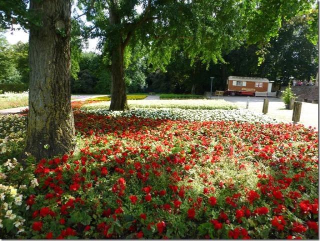Blooming flowers at Killesbergpark in Stuttgart