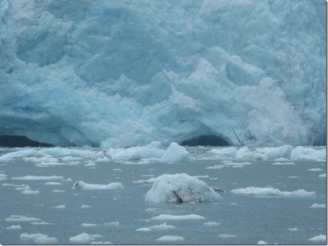 seward glacier tour 3